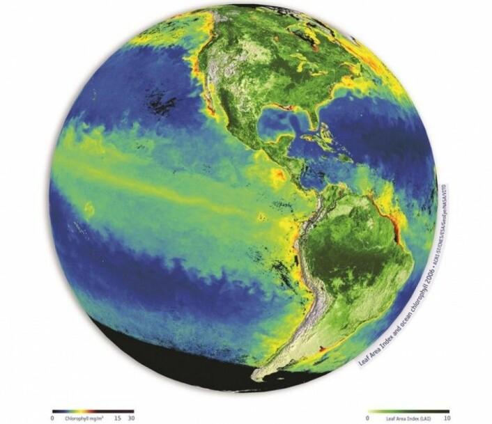Løvmengde i vegetasjon på land og klorofyll i overflaten til havs, sett av satellitter. (Foto: (Grafikk: ACRI-ST/CNES/ESA/GeoEye/NASA/VITO))