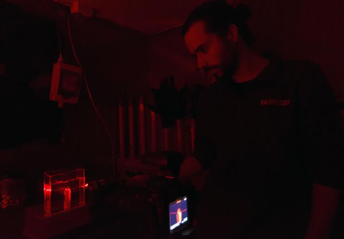 Masterstudent Inaki R. T. Roca bestemmer fokuspunktet til håkjerring ved å gjennomlyse øyelinsen med laser. (Foto: Kim Præbel)