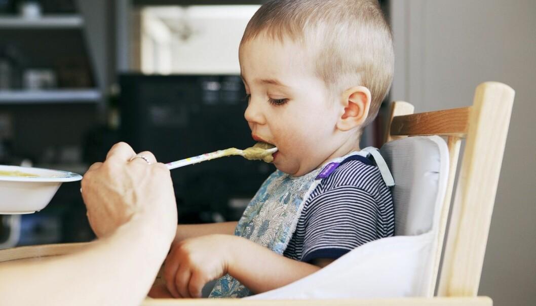 I perioden da barnet blir ammet eller får morsmelkerstatning og samtidig får supplerende kost er det viktig hva det får å spise. En ny studie tyder på at særlig fiber og protein gir barnet en god tarmflora, mens fett har den motsatte virkningen.  (Foto: Shutterstock /NTB Scanpix)