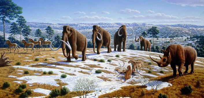 Pleistocen i Spania for over 10 000 år siden: Det er verken mulig eller ønskelig å gjeninnføre elefanter og løver til Europa, slik <i>pleistocene rewilding</i> i ytterste konsekvens ville innebære. (Foto: (Illustrasjon: Mauricio Antón, PLoS Biology, DOI:10.1371, Creative Commons Attribution 2.5 Generic Licence))