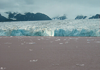Pink marine sediments reveal rapid ice melt during the Ice Age