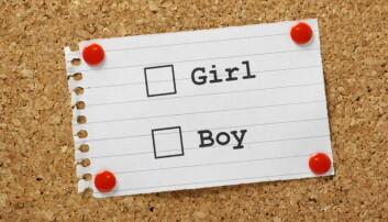 – Transbarn trenger juridisk anerkjennelse