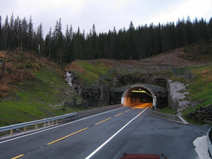 Korgfjelltunellen i Nordland. Denne tunellen erstattet en fjellovergang som ofte var stengt. Tunellen ble åpnet i 2005. (Foto: Zorrolll/CC BY-SA 3.0)