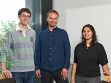 The Norwegian researchers behind the discoveries (from left): Alexander Thrane, Erlend Nagelhus and Vinita Rangroo Thrane at the Institute for Basic Medical Sciences, University of Oslo. (Photo: Gunnar F. Lothe, UiO)