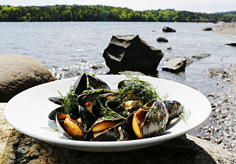 A new way of detecting toxic mussels