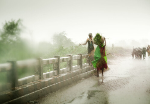 New book on climate change adaptation in Indian agriculture