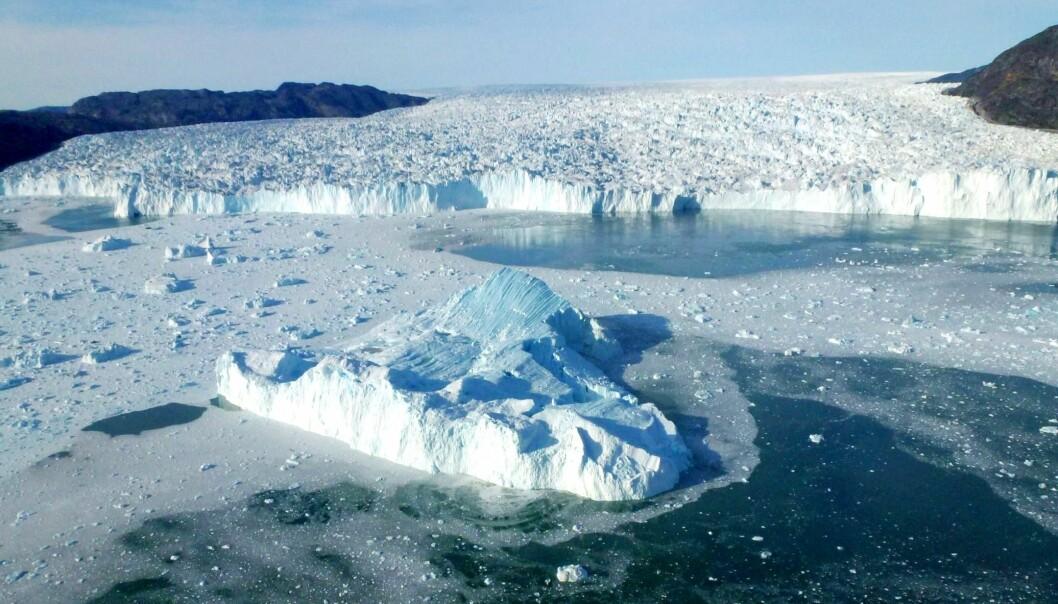 Store isbre på Grønland. (Foto: A. Hubbard, Cage)