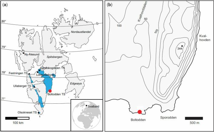 Boltodden ligger på sørøstkysten av Spitsbergen, om lag 100 kilometer sørsørøst for Longyearbyen. Andre steder hvor det er funnet dinosaurspor er merket med TS (tracksites) i kartet til venstre. Festningen rett vest for Longyearbyen var det første stedet hvor dinosaurspor ble funnet, i 1960. Det var en verdenssensasjon. Den gangen kjente ikke forskerne til at kontinentplatene flytter seg over jordskorpen, så det ble tatt som et tegn på at dinosaurer kunne leve i mye kaldere strøk. (Foto: (Figur: Fra studien i tidsskriftet til Geological Society, London, doi:10.1144, Creative Commons-BY 3.0-lisens))