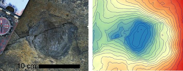 Sporene ble fotografert og omformet til tredimensjonale modeller (til høyre). Her er sporet etter en framfot som viste at dette ikke var en rovdinosaur. (Foto: Hans Arne Nakrem, Naturhistorisk museum, Universitetet i Oslo.)