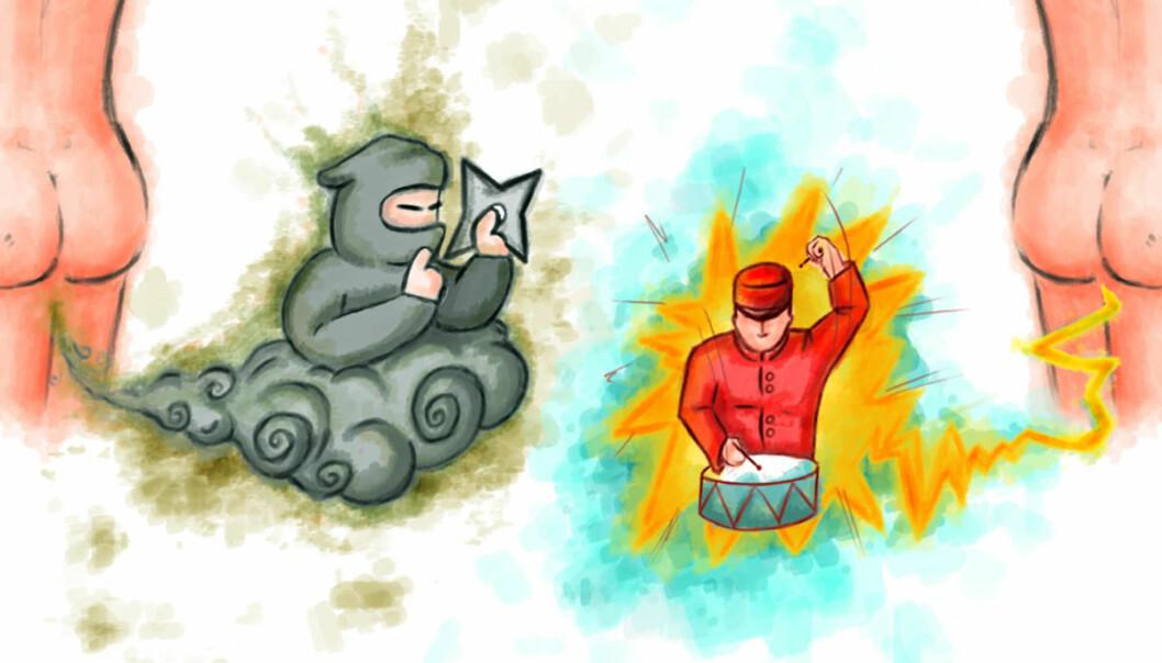 Ninja eller buekorps-promp? Professor Trygve Hausken deler prompene inn i to kategorier: geriljaprompene, som er lydløse, men stinkende, og de bråkete prompene, som er eksplosive, men som lukter mindre. (Illustrasjon: Arjun Ahluwalia, UiB)