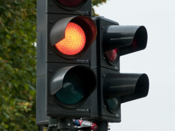 High-risk takers drive through yellow lights more often than risk-aversive do. (Foto: Colourbox)
