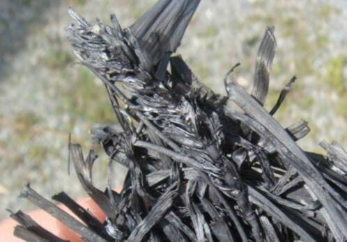 Biochar reduces heavy metal uptake in plants