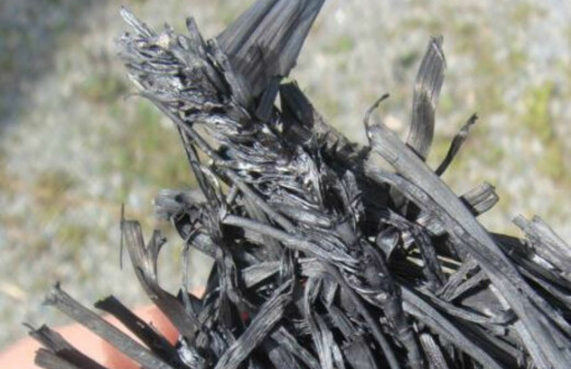 Biochar reduces heavy metal uptake in plants