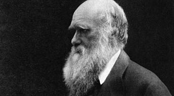 Kronikk: Hvor sosial er darwinismen?