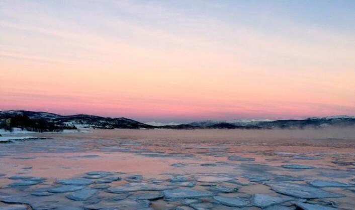 Et foto Kari Leibowitz tok av fjorden og himmelen utenfor Tromsø. Å kunne se skjønnheten i vinterlyset er ikke en opplagt evne. Det er antakelig noe du må lære deg, eller trene deg opp til, omtrent som evnen til å kunne se skjønnhet i kunst. Kanskje er det slik at mange nordmenn har evnen til å se det vakre i et blått vinterlandskap.  (Foto: Kari Leibowitz)
