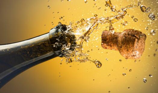Alkoholens akseptable konsekvenser
