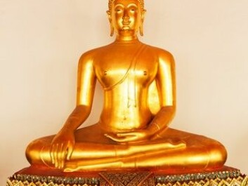 Buddha is almost always portrayed in a meditating pose. (Photo: Foto: Nomad_Soul, NTB Scanpix)