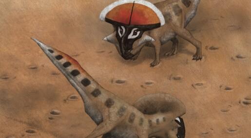 Også dinoer dollet seg opp for å få draget
