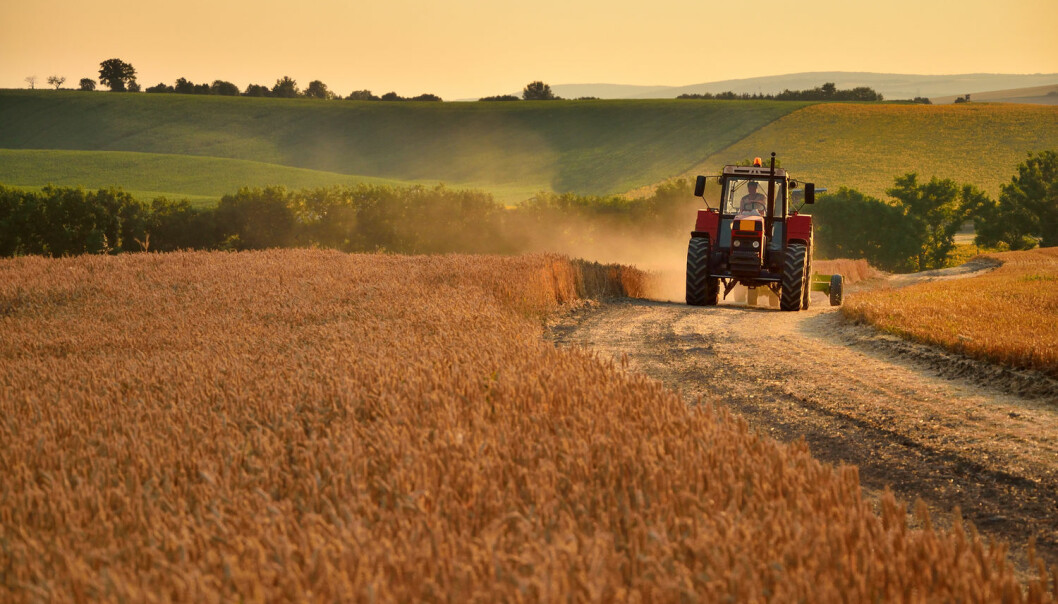 Effektiv bruk av jordressursene synes å være nødvendig for å dekke matbehovet til klodens voksende befolkning. (Illustrasjonsfoto: Shutterstock, NTB scanpix)