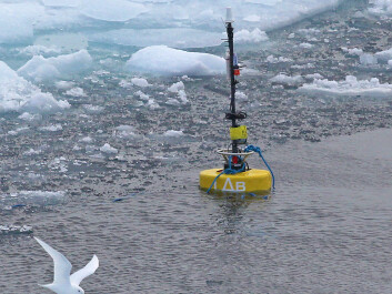 Hydrophones deployed during the 2013 Oden Arctic Technology Research Cruise were used to capture the sounds of the Oden icebreaker breaking through the ice. Researcher Michel André says that scientists have relatively little data on how man-made underwater sounds, such as the crunching of the boat through ice ridges, propagate under the ice. (Photo: Jan Durinck, Marine Observers)