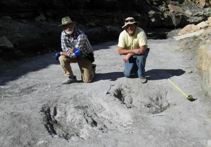 Paleontologene Martin Lockley og Ken Cart poserer ved skrapemerkene etter dinosaurene.  (Foto: University of Colorado Denver.)