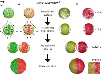 Figure 3: Here's how patchy colloidosomes are made. (Illustration: Nature Communications)