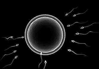 Early pre-programming of genes