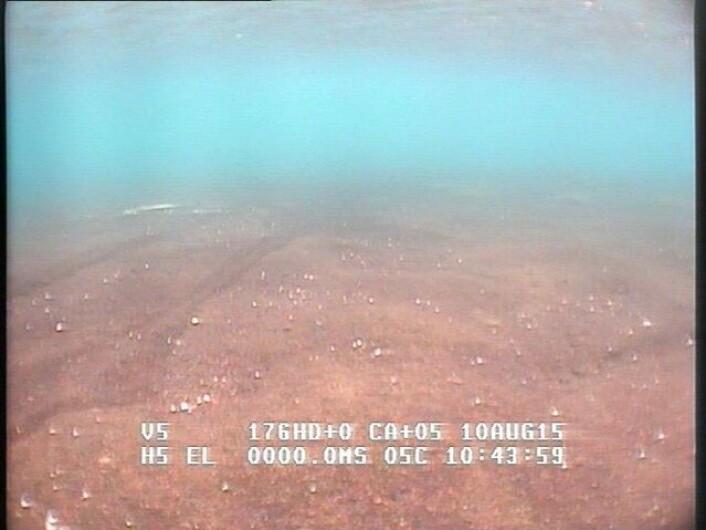 Forskerne er ute etter de områdene i Nordlaguna som ser aller kjedeligst ut, de som har en flatt og ensformig havbunn dekket av mye og finkornete sedimenter. (Foto: NTNU)