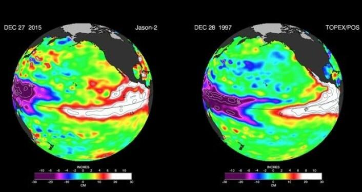 Satellittmålt havnivå-anomali ved årets slutt for de to store El Ninjoene. Mange likheter, og noen forskjeller. (Bilde: NASA-JPL)