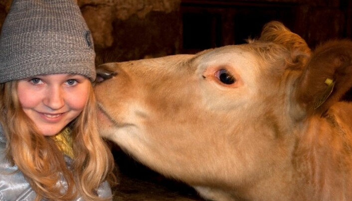 Farm life is beneficial for pregnant women