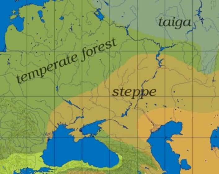 Det gule området viser den pontisk-kaspiske steppen. (Foto: (Bilde: Dbachmann/CC BY-SA 3.0))