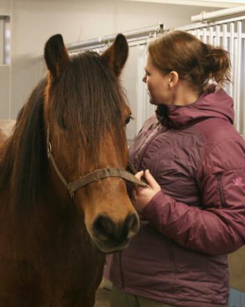 Å bevisst bruke temperament i markedsføringen av de nasjonale hesterasene vil løfte elementene i temperament opp til bruksegenskaper for rasene, sier avlsforsker Hanne Fjerdingby Olsen. Her med dølahesten Tyin. (Foto: Janne Karin Brodin)