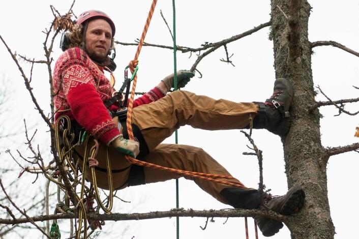Kenneth Thomassen er gartner og arborist. ( Foto: Lars Sandved Dalen)