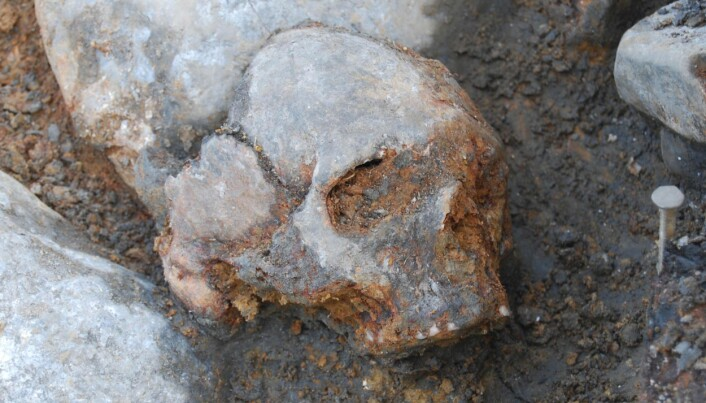 DNA study uncovers ancient ancestor of Europeans