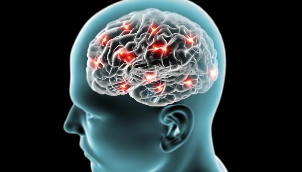 Hjerneforskere vet egentlig ikke hvordan hjernen lagrer informasjon, men det er veldig usannsynlig at en frisk hjerne noensinne vil bli fylt opp, forteller en forsker – tvert imot vil eksisterende kunnskap gjøre deg flinkere til å lære nye ting.  (Illustrasjon: Shutterstock)