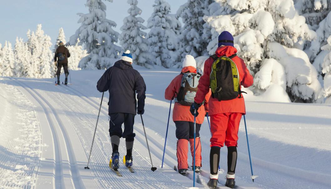Til tross for den tradisjonelle søndagsturen: Vi nordmenn er kanskje ikke så spreke som vi tror?  (Foto: Rob Kint/ Shutterstock/NTB scanpix)