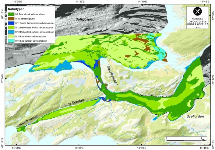 Naturtypekartet over Saltstraumen vil gi ny og viktig informasjon for forvaltninga av området. (Foto: (Illustrasjon: NGU))