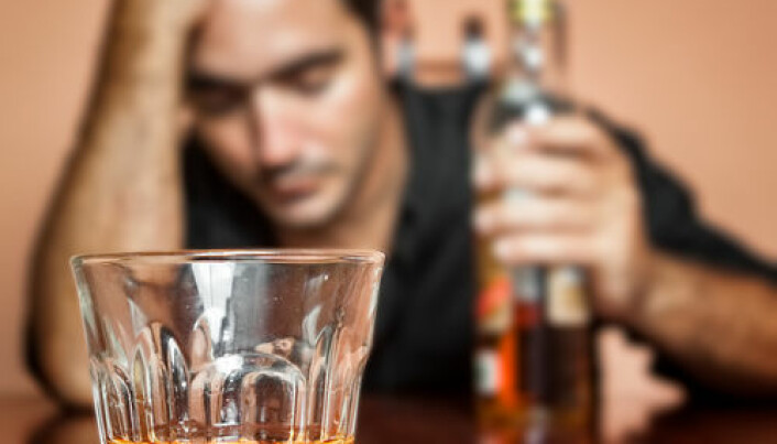 Alcoholism linked to lack of intestinal bacteria