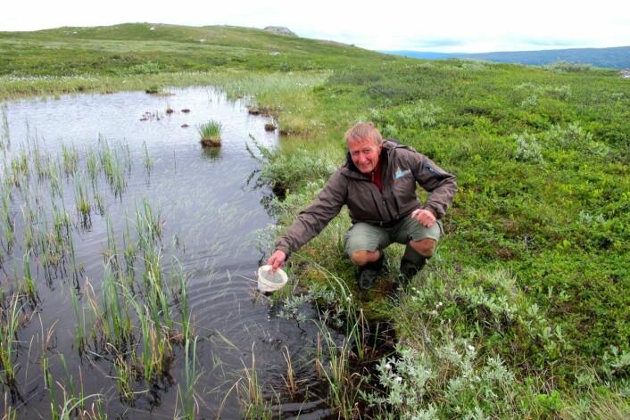 Bjørn Walseng fortsetter jakten på ukjente arter i G.O. Sars' fotspor. Her samler han harpacticoide hoppekreps i en liten dam. (Foto: Bjørn Walseng, NINA)