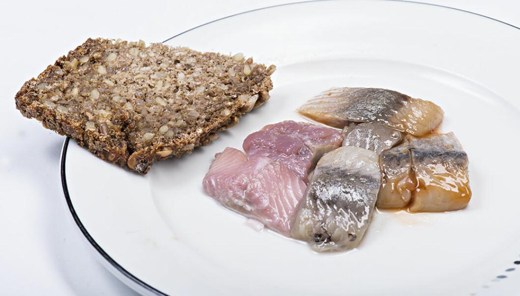 Ved å spise ren sild får du i deg masse omega-3 og ketolinsyre. (Foto: Jon-Are Berg-Jacobsen, Nofima)