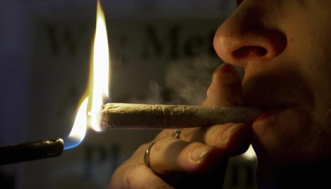 Cannabisbrukarane som kriminolog Sveinung Sandberg har intervjua, fortel både om «bad trips» og grensesprengande opplevingar.  (Foto: Toussaint Kluiters, Reuters/NTB scanpix)