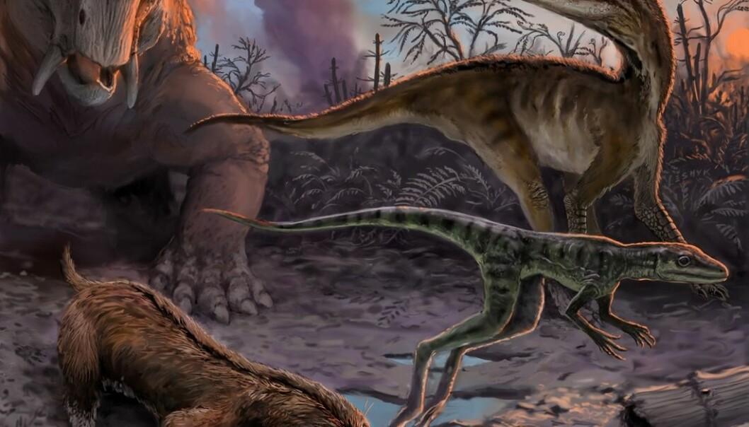 Illustrasjonen viser dinosaurenes forfedre på den argentinske klippeformasjonen Chañares. Her levde de for mellom 234 og 236 millioner år siden.  (Illustrasjon: Victor Leshyk)