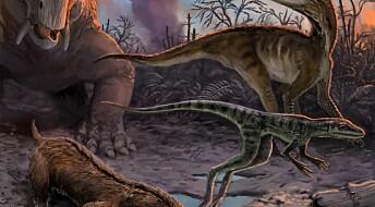 Dinosaurene utviklet seg raskere enn antatt