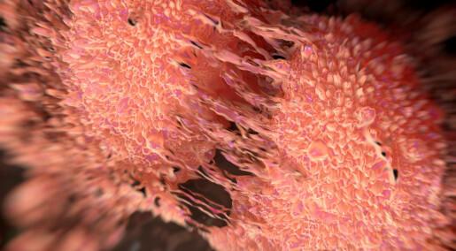 Hva skjer når proteiner skulker jobben?