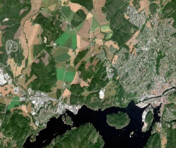 Her flyr Sentinel-2A over Sør-Norge. Hvilken by ser vi her? (Copernicus Sentinel data (2015). Prosessering: Institutt for geofag/UiO)