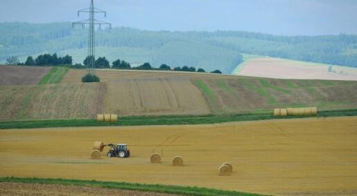 Bønder slit med samarbeidet