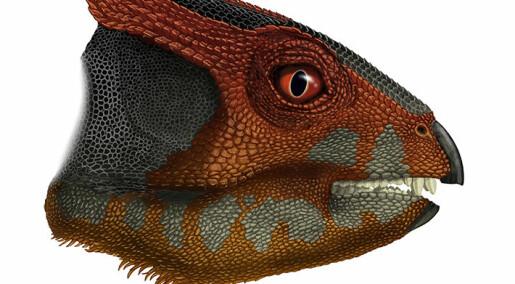 Denne dinosauren har ingen visst om