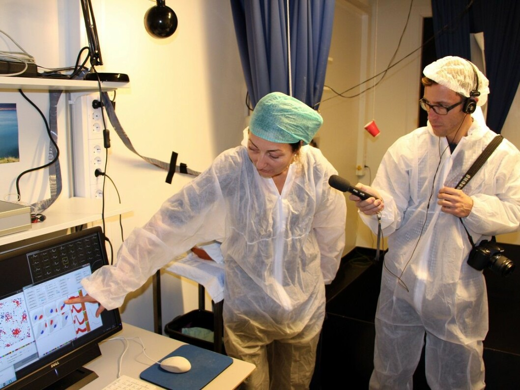 Media interest in the Mosers' research exploded when the announcement was made earlier this autumn that they had won the Nobel Prize. Here Swedish Radio reporter Björn Guner gets some insights into what researchers can learn from the data collected from a rat's brain. (Photo: Steinar Brandslet/NTNU)
