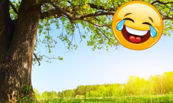 «Det grønne skiftet» og «Tears of joy» – symboltunge nyord