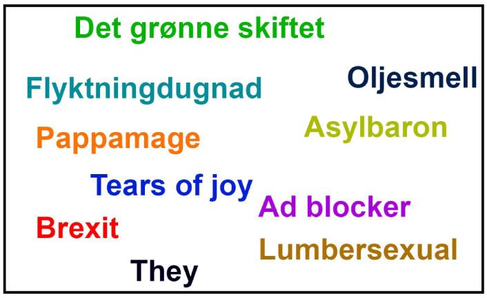 Norske og engelske nyord inkludert andre forslag. (Foto: (Illustrasjon: Solveig Borkenhagen))